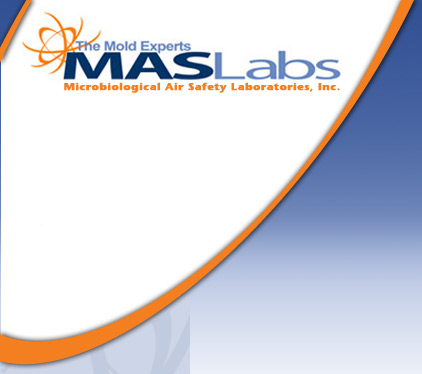 Why Choose MAS Labs for Mold Testing & Remediation?